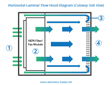 Miraculous Horizontal Vs Vertical Laminar Flow Hoods Lab Supply Network Wiring Cloud Battdienstapotheekhoekschewaardnl