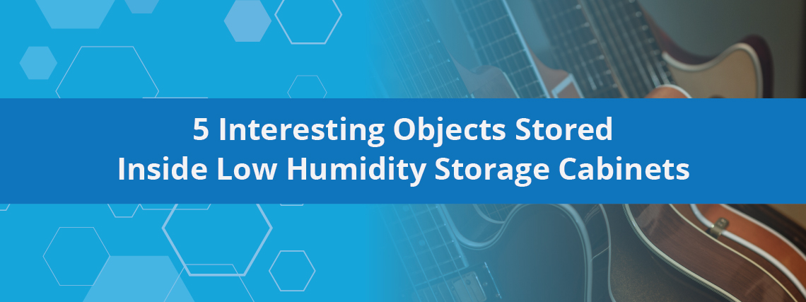 5 Interesting Objects Stored Inside Low Humidity Storage Cabinets