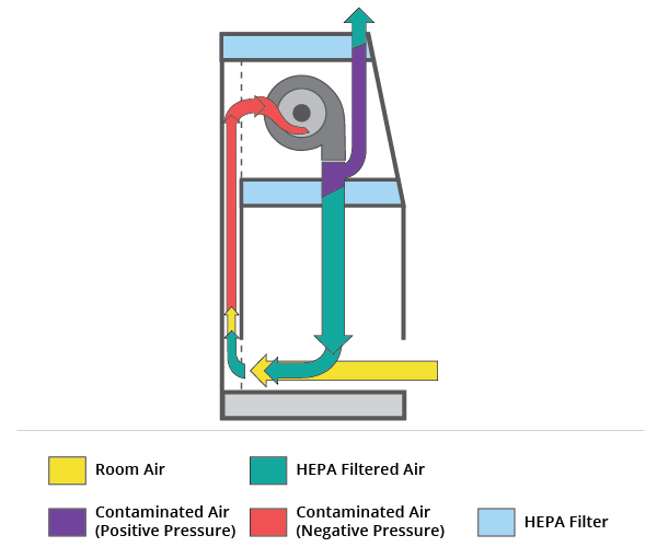 Biological Safety Cabinet Diagram
